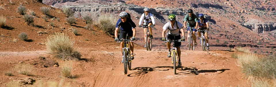 a group of mountain bikers on a gravel road