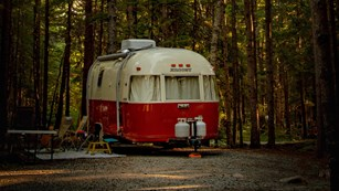Vintage camper parked in gravel site under a canopy of trees