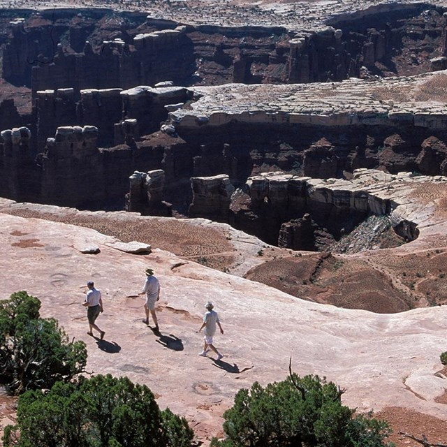 three people walk along a canyon rim