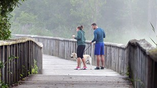 A couple are walking their dog along the Beaver Marsh