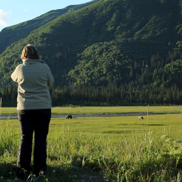 Two women and a man watch bears from a distance