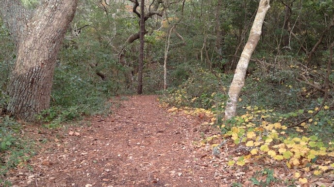 The Thomas Hariot Trail