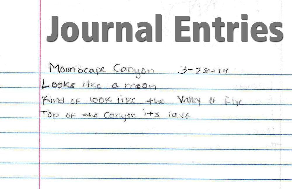Journal entry for footnote to youth