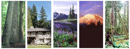Five scenes of Mount Rainier National Park: old growth forest, a building in the historic district, a meadow in summer, the mountain at sunrise, and a temperate rainforest.