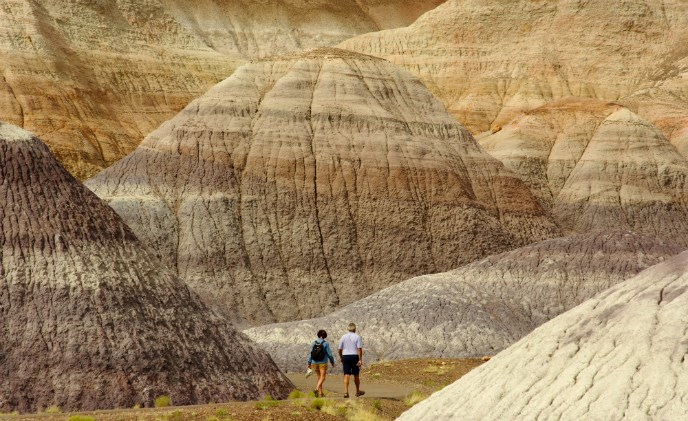 Hikers on the Blue Mesa Trail