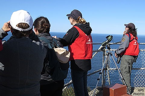 Two winter wildlife docents wearing red vests and two visitors looking for whales from a fenced-in observation deck.