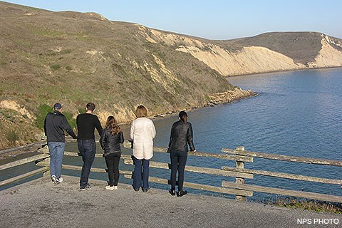 Five visitors in the foreground look down from a bluff-top overlook at elephant seals that are on narrow beaches at the base of sloping bluffs in the distance.