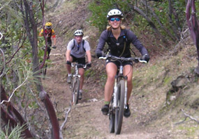 Mountain bikers on trail.
