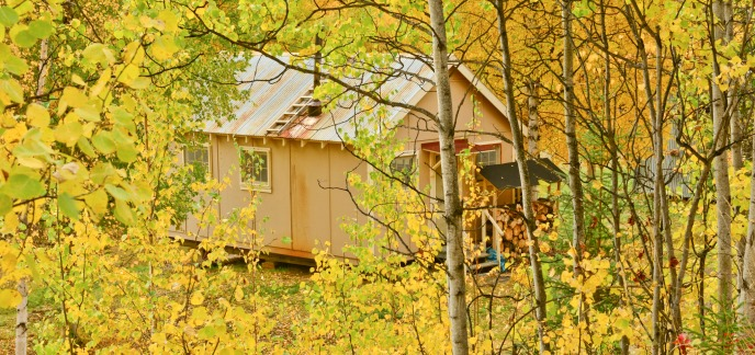 A Coal Creek Camp cabin viewed through golden aspen leaves of fall.