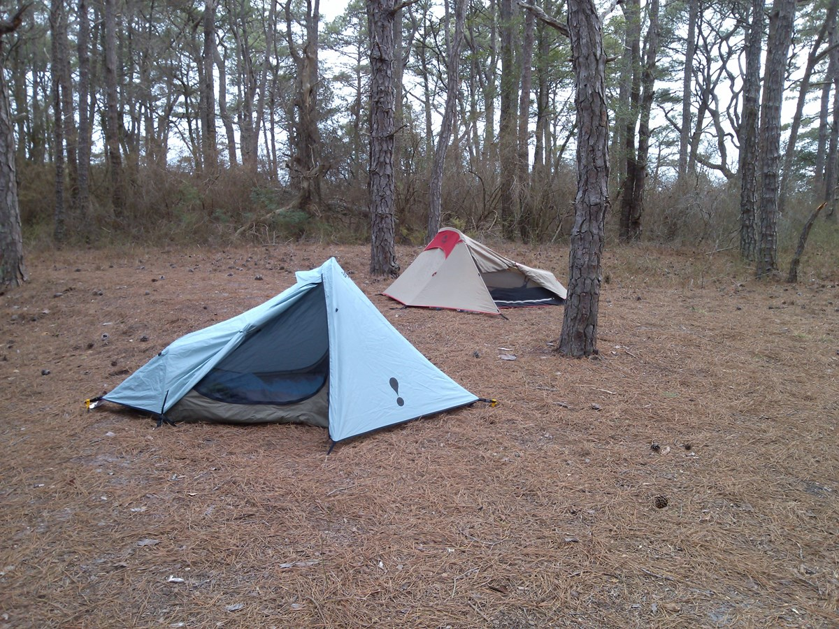 Two camping tents in a wooded area
