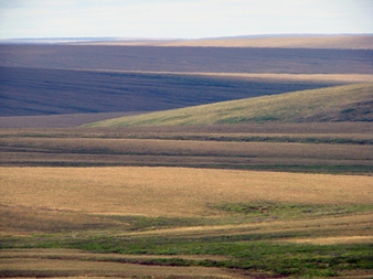 Layers of green and brown criss-cross on hills across the tundra in summertime