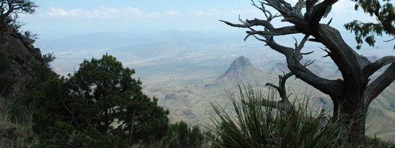 Elephant Tusk Peak viewed from the South Rim of the Chisos Mountains.