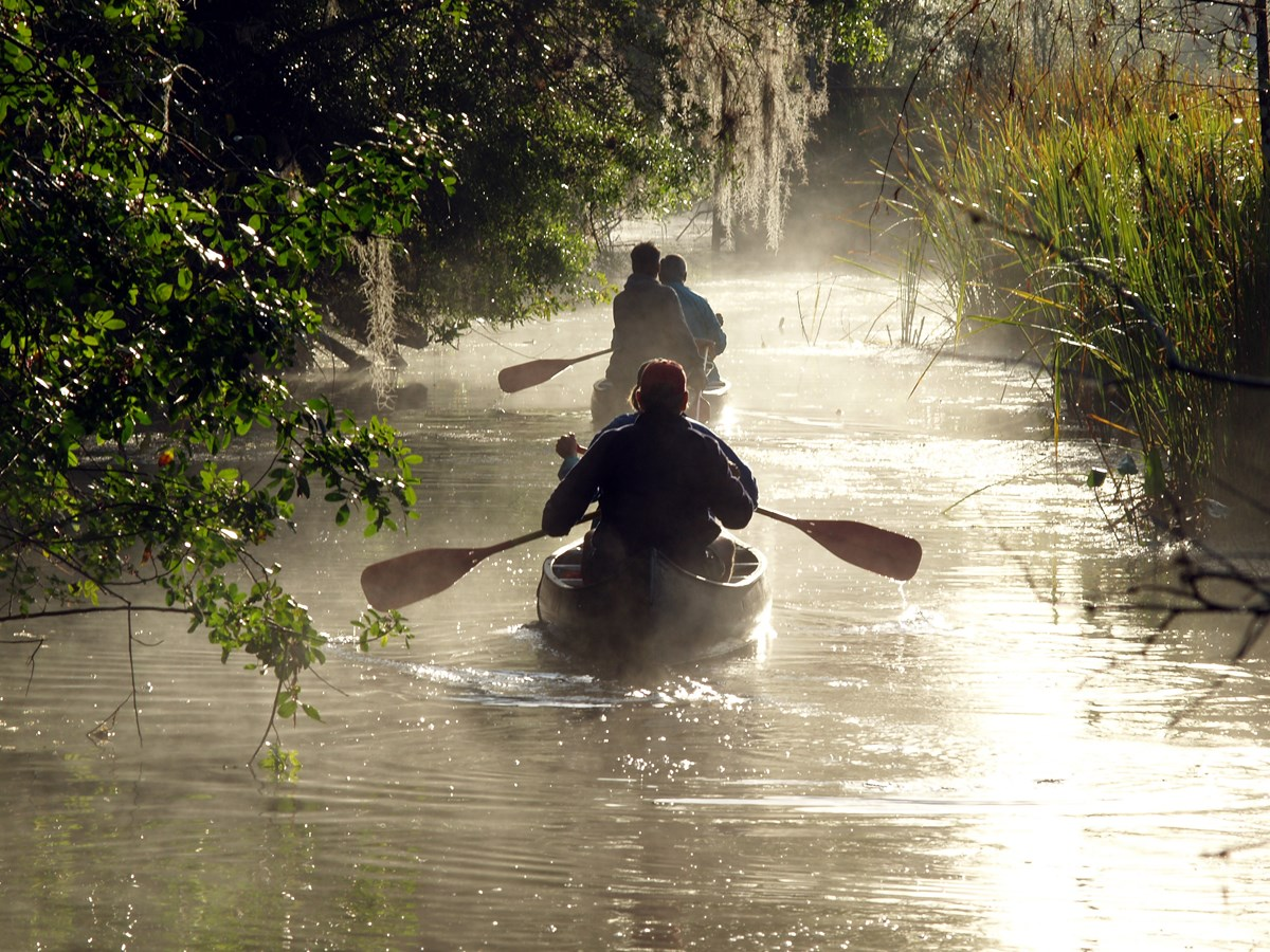 Two canoes paddle down a foggy river past trees draped with Spanish moss.