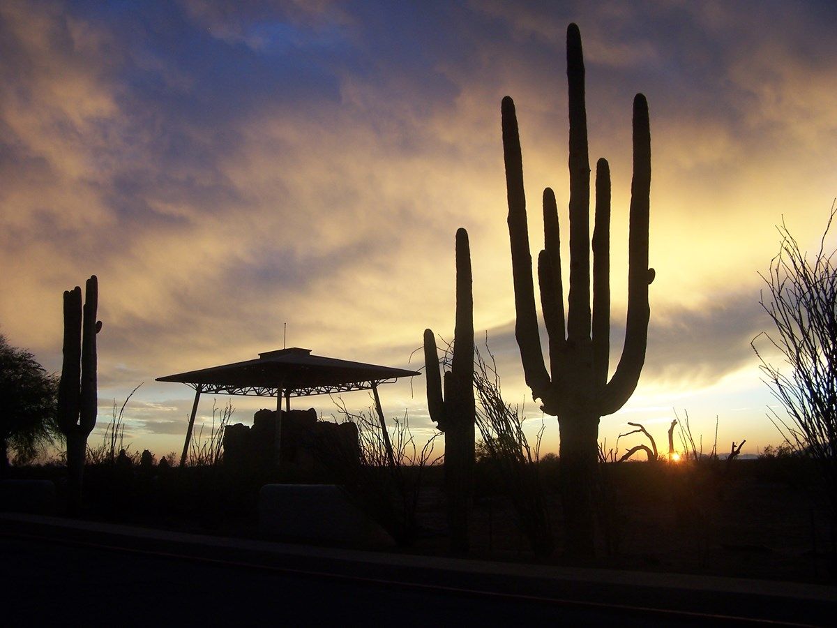 sunset at Casa Grande Ruins with saguaro cactus silhouettes framing a silhouette of the Great House