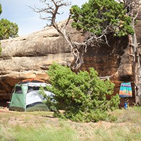 a green tent beneath a tree and a red rock cliff