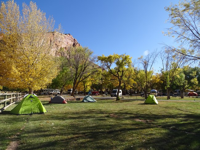 Tents and RVs camping in a campground with green grass, trees with fall colors, below red cliffs and blue sky.
