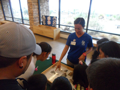 An SCA shows children bat specimens.