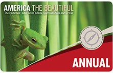 annual pass with green frog and green background