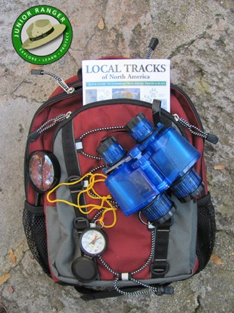 Discovery Daypack