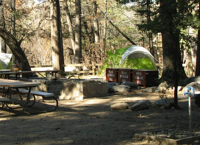 picnic table, food lockers, fire pit and tent in campground