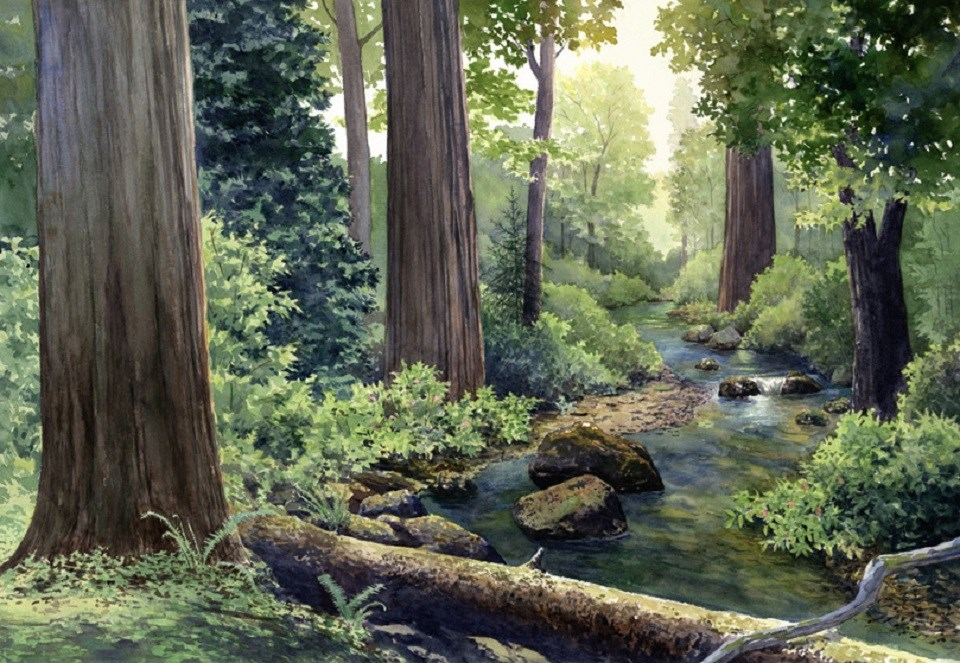Artistic rendering of a redwoods forest
