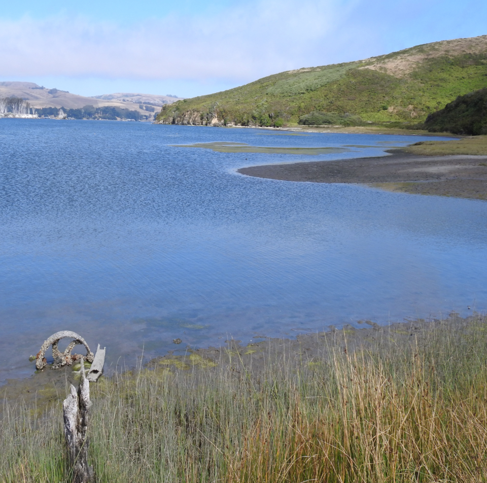 A color photo of a blue-colored bay with a barnacle-covered, small, metal wheel and a wooden post at the water's edge in the foreground.
