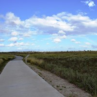 Paved trail leading into the green coastal prairie