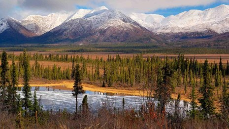Wilderness in Alaska's Wrangell-St Elias National Park.