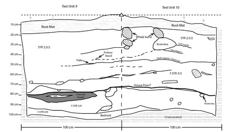 A drawing of stratigraphy seen from the inside of an archaeological excavation.
