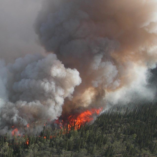 A wildfire rages through the timber in an Alaskan mountain range.