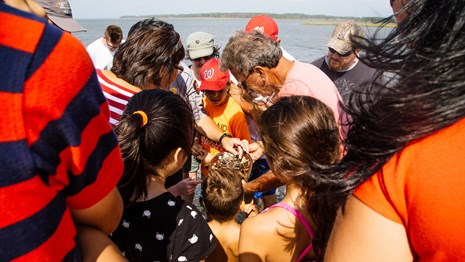 Visitors crowd around a horseshoe crab caught and released on a Marine Explorers program