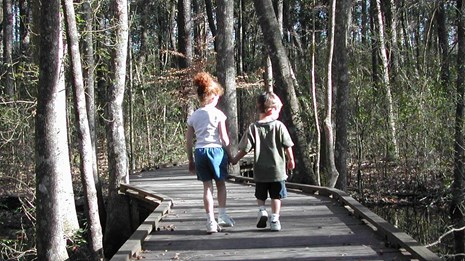 Two children walking down a boardwalk lined with trees.