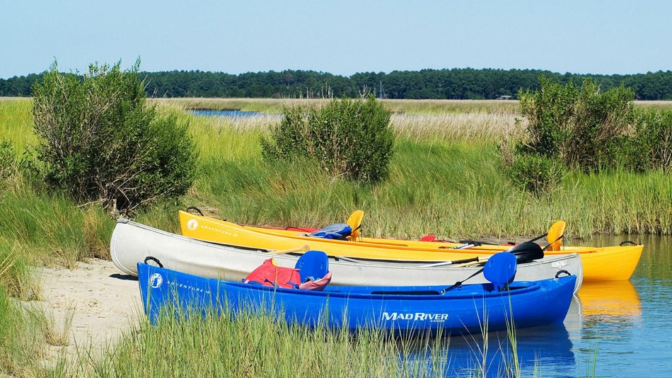 Canoes parked on a sandy beach in a marshy, coastal landscape.
