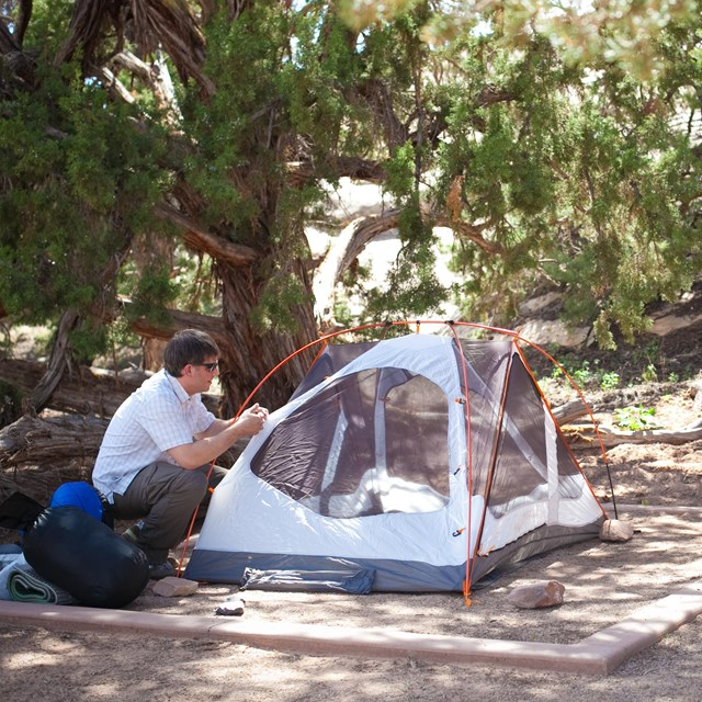 a man sets up a tent on a shady tent pad