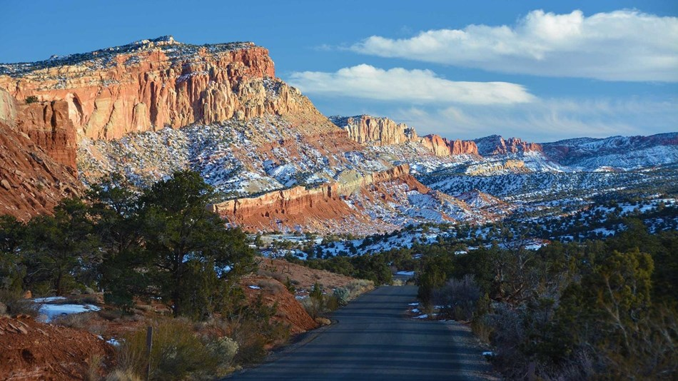 Blacktop road through red cliffs, with trees and blue skies.