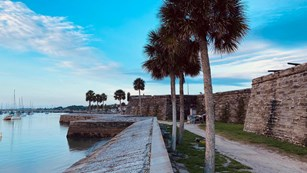 Seawall on east side of the fort. Wall, palm trees, water, and sail boats in background.