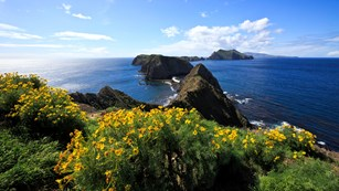 Inspiration Point, Anacapa Island ©Tim Hauf, timhaufphotography.com