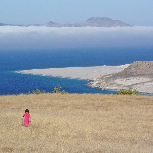 Visitor walking on grassy hill overlooking ocean. © Kathy de-Wet Oleson