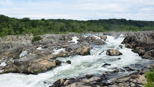 Water flowing over Great Falls