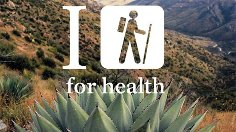 I hike for health logo, agave and canyon in the background