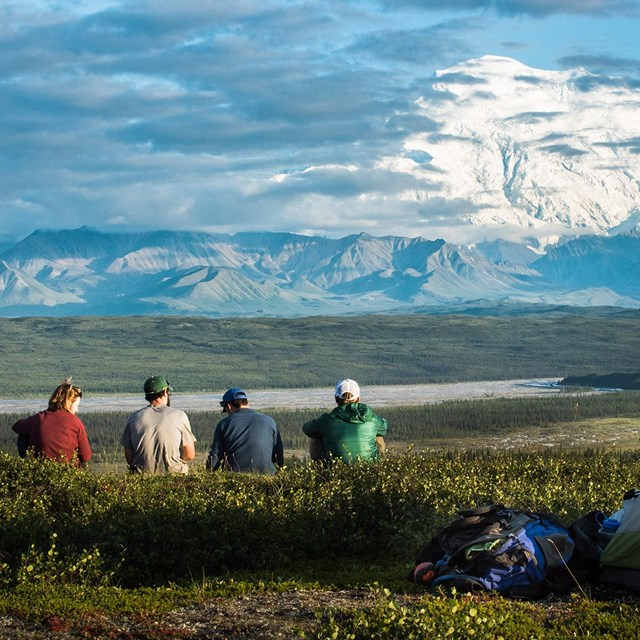four people sit near a tent and look out towards mount denali