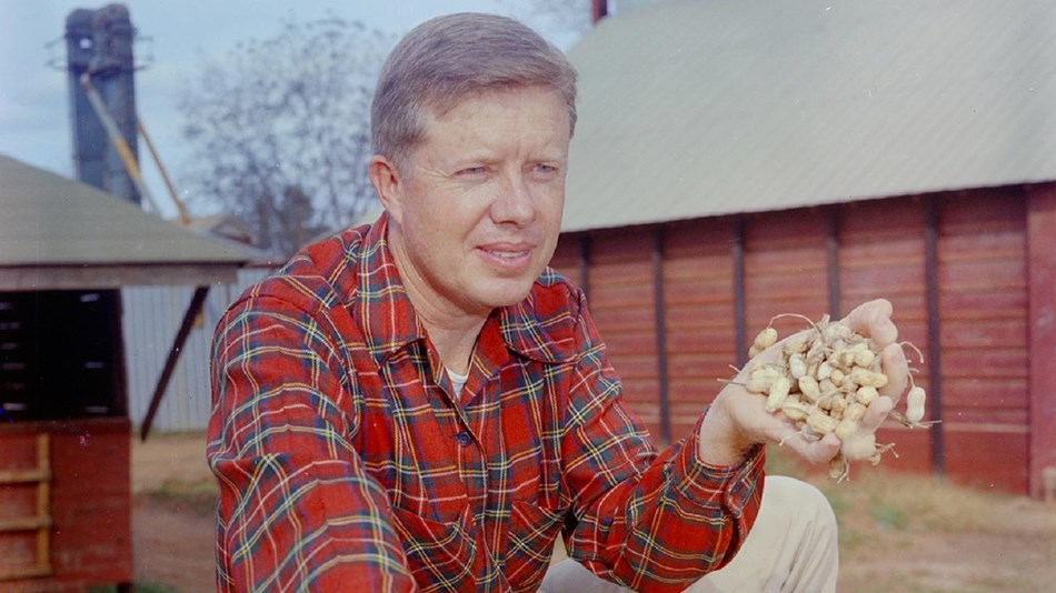 Historical photo of Jimmy Carter holding peanuts on a farm