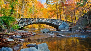 Rock bridge over stream with colorful fall foliage