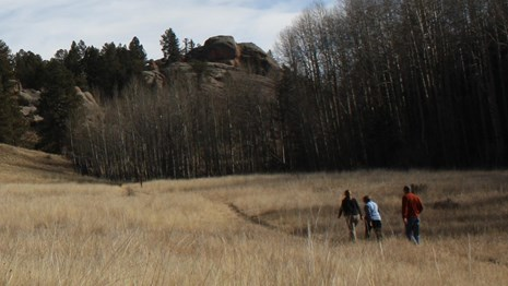Hike at Florissant Fossil Beds National Monument