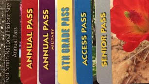 6 different park passes