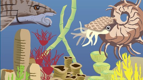 National Fossil Day artwork with permian reef illustration