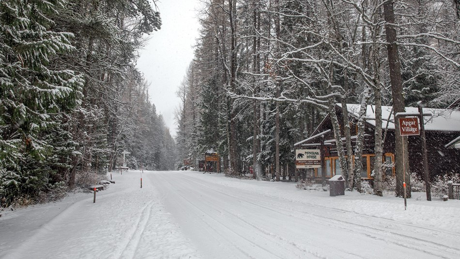 Apgar Village with the first snow of the season