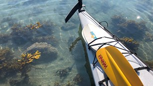 a kayak sits in the shallow water of the intertidal zone