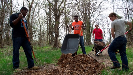 four young men work to mulch a trail
