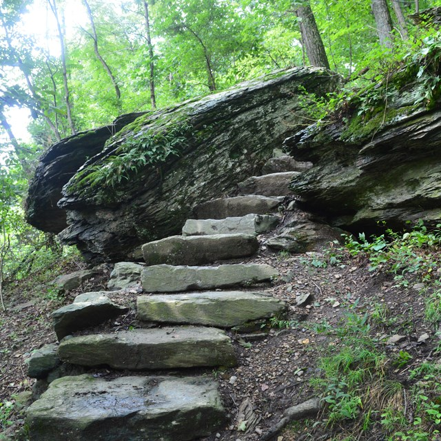 A set of stone steps climbs up between two large boulders on the Lower Town Trail.